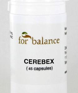Cerebex_45
