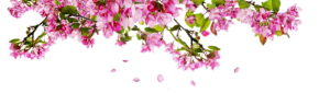 spring_banner_site